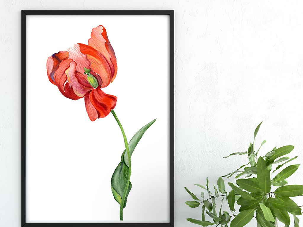 简单水彩画花卉图片-简约唯美手绘水彩红色花朵无框画图片