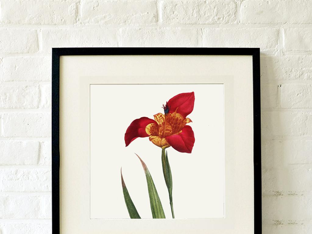 小清新植物花卉小花油画2联装饰画