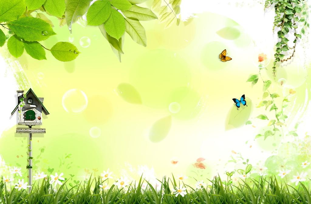 清新绿色植物花草丛生蝴蝶风景广告图