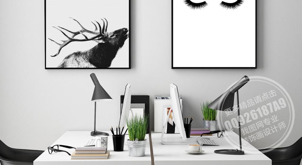 背景墙|装饰画 无框画 动物图案无框画 > 创意黑白自然动植物无框装饰