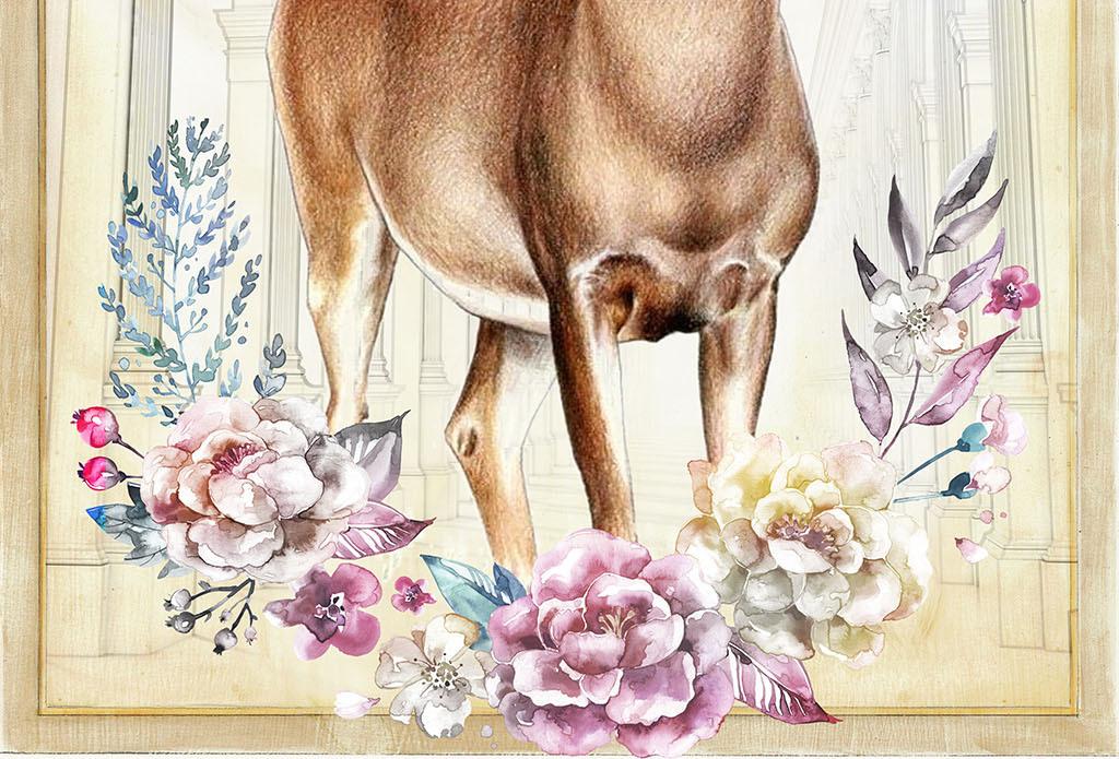鲜花花瓣复古怀旧沙发卧室壁画壁纸墙纸玄关装饰画麋鹿北欧图片