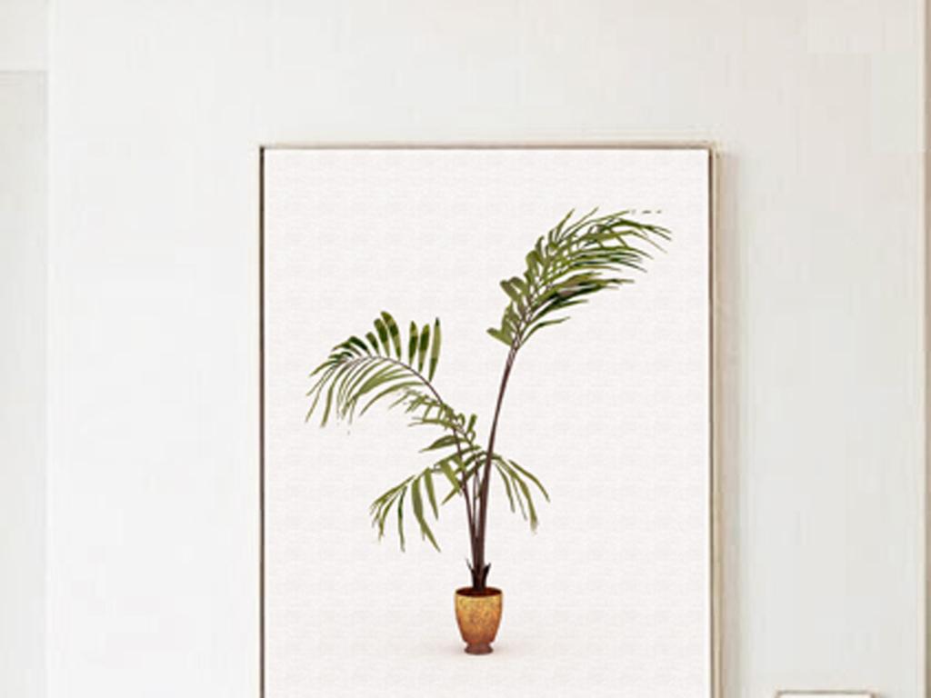 盆栽植物手绘pop手绘pop字手绘水彩手绘水彩花卉手绘