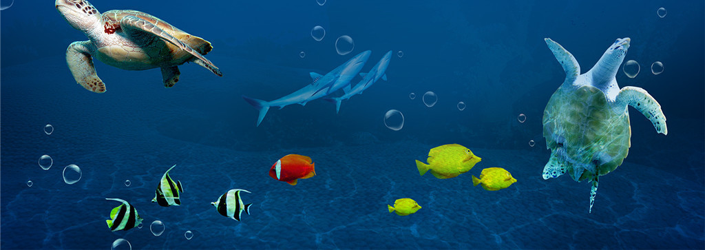 海底世界3d地板立体画地砖图片