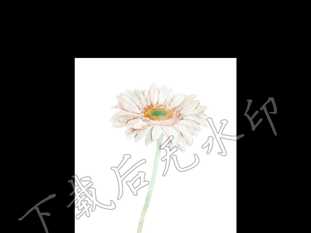雏菊简约装饰画手绘水彩简约风格小清新风格清新装饰画手绘装饰画清新