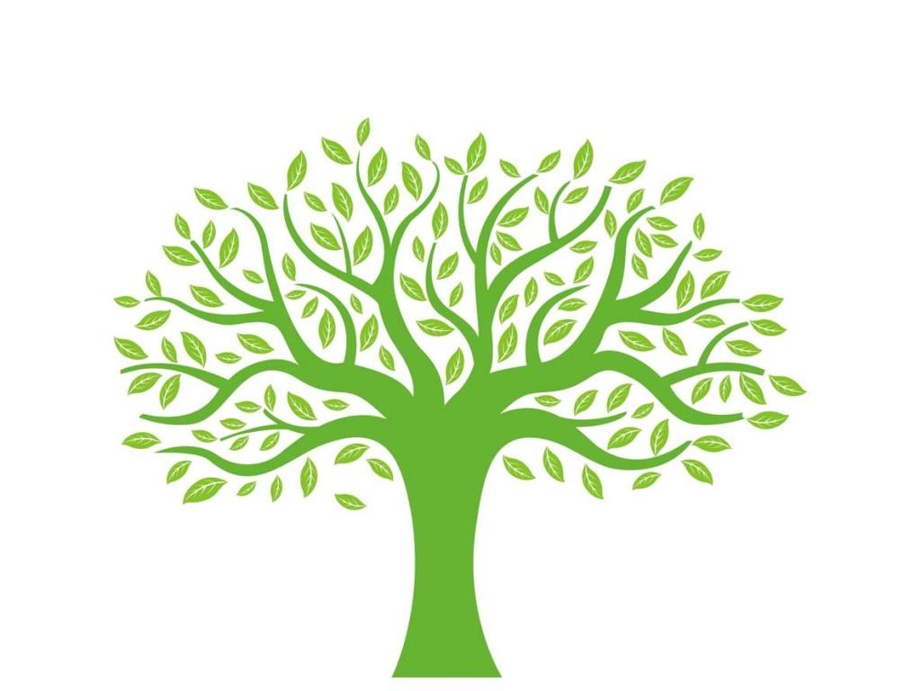 大树矢量素材树木小树成长树