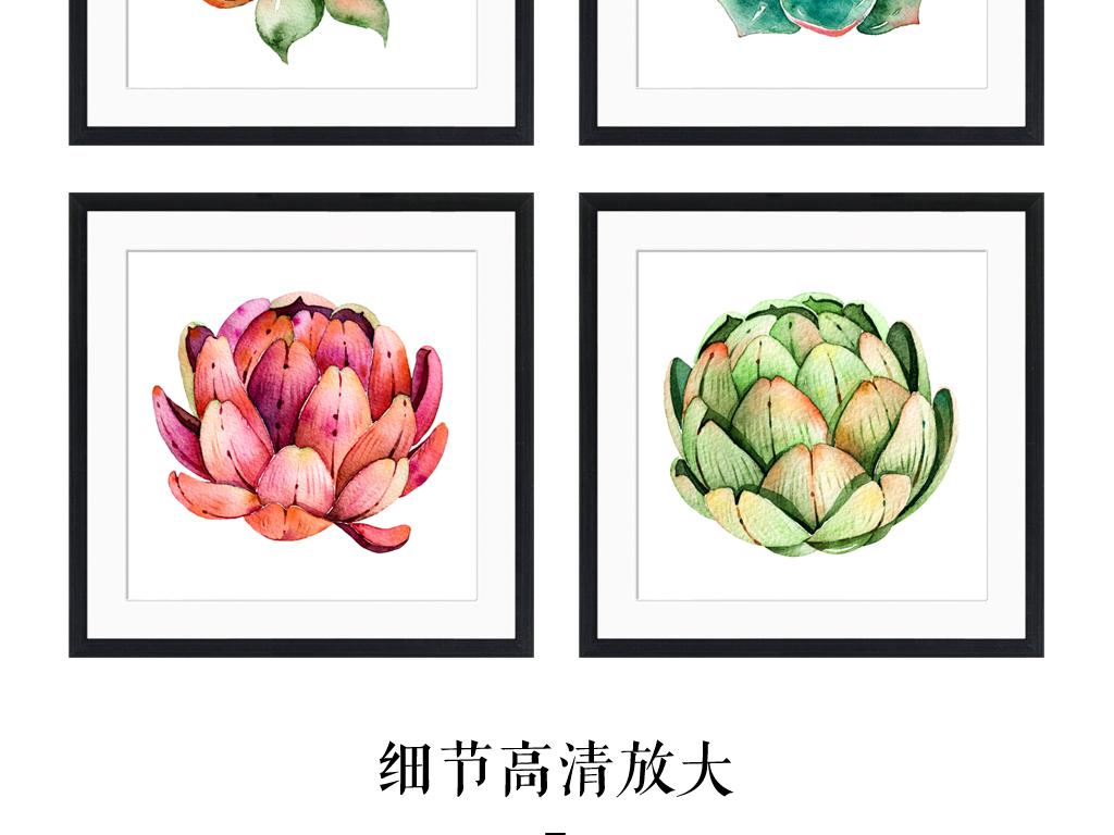 多肉植物植物相片                                  水彩画