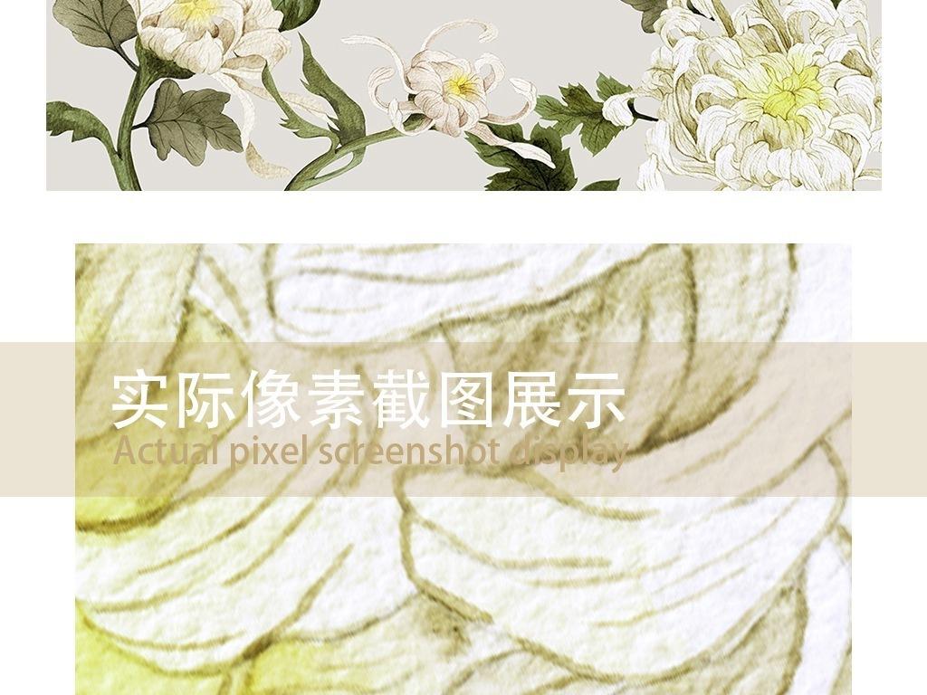 手绘田园风背景墙淡雅背景墙纸壁纸壁画白色菊花彩铅菊花秋菊水彩菊花
