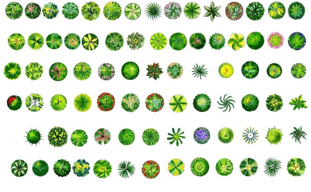 植物图块psd分层园艺小品                                  室内
