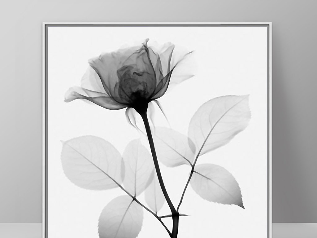黑白透明玫瑰花欧式现代简约北欧家居装饰画图片