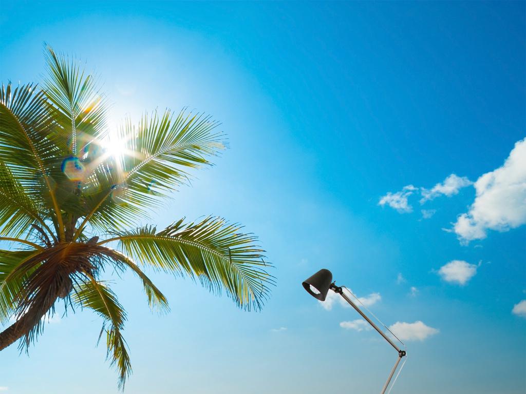 现代简约蓝天大海椰树海水浪花风景背景墙