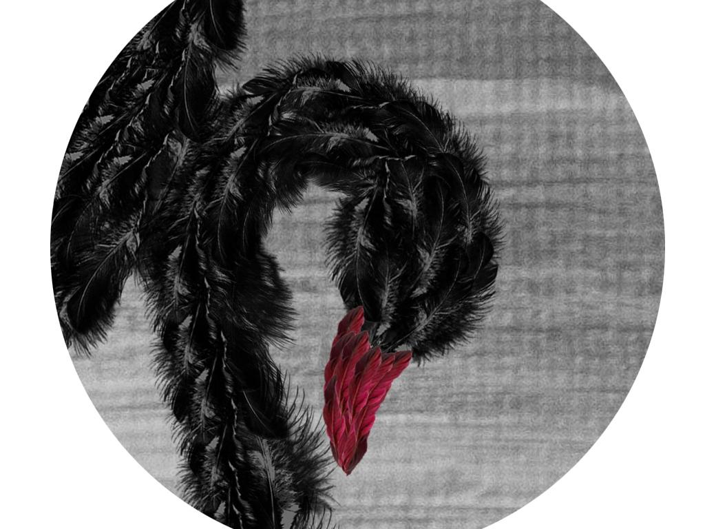 黑天鹅芭蕾舞现代简约艺术装饰背景墙