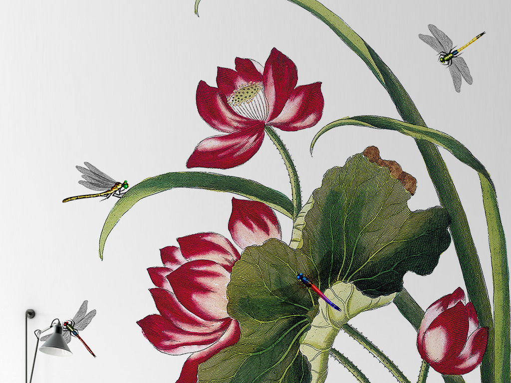 中式工笔手绘蜻蜓戏荷背景墙