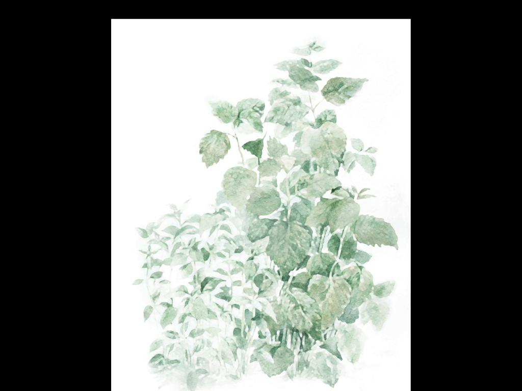 北欧绿植手绘壁纸贴图