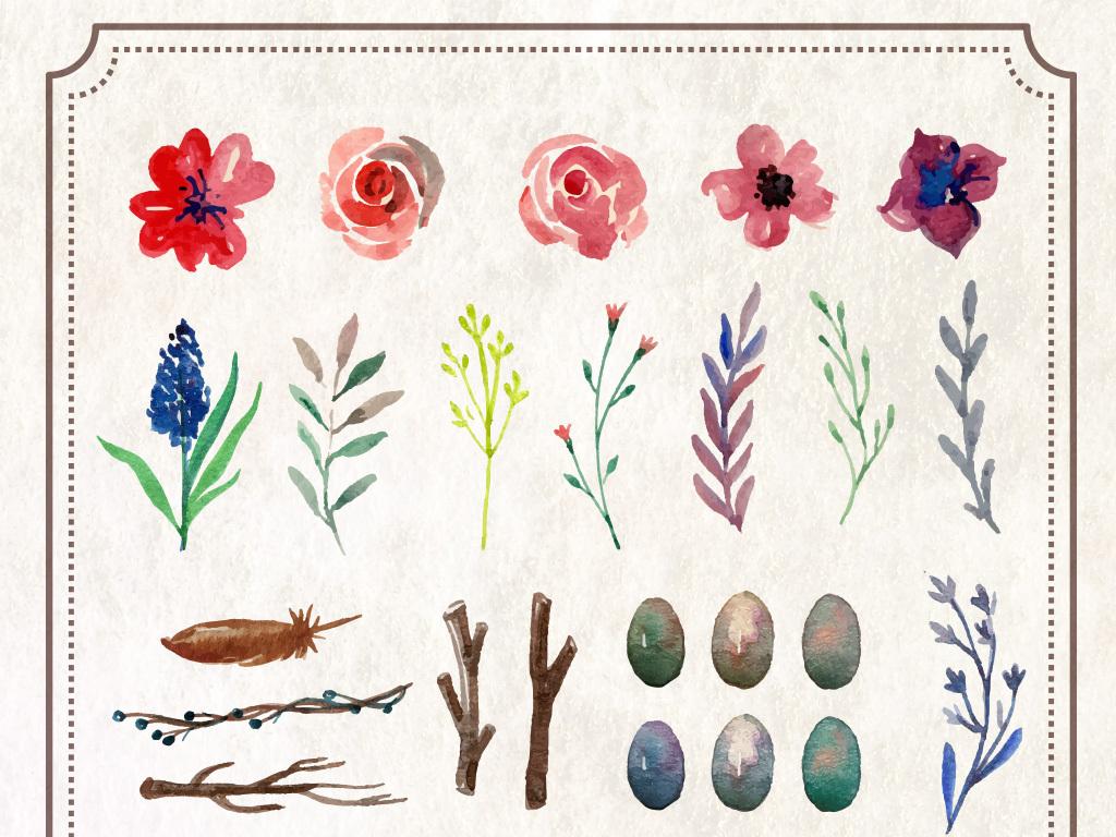 水彩花卉叶子植物