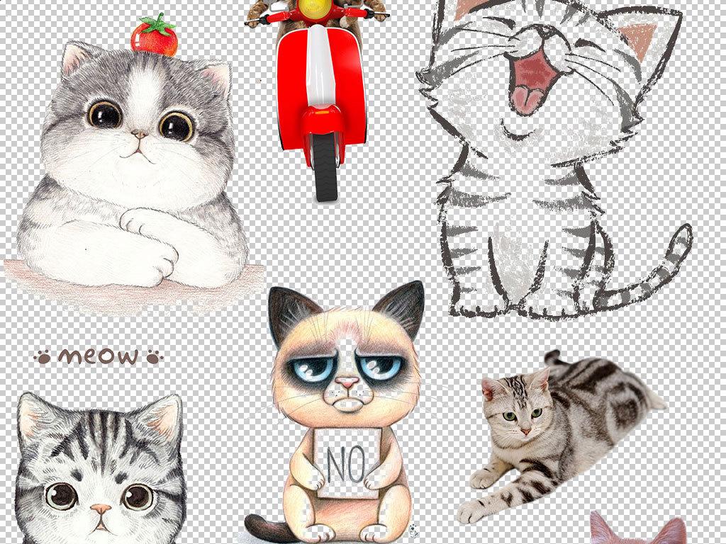 宠物猫幼儿园                                  儿童画手绘插画小