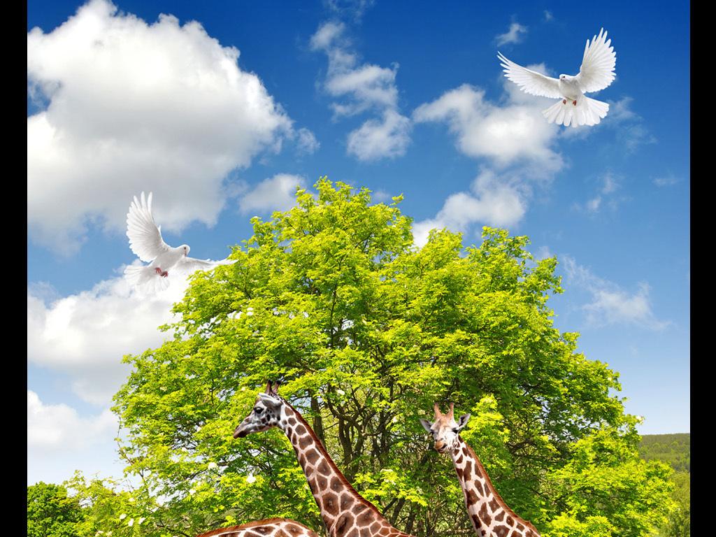 动物世界长颈鹿3d风景画