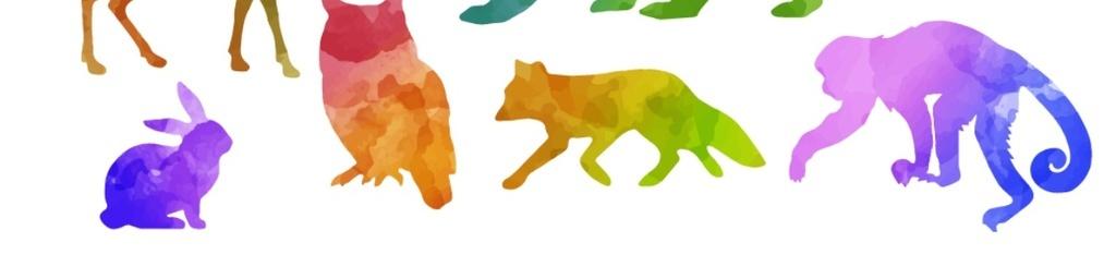 彩色水彩野生动物剪影矢量元素