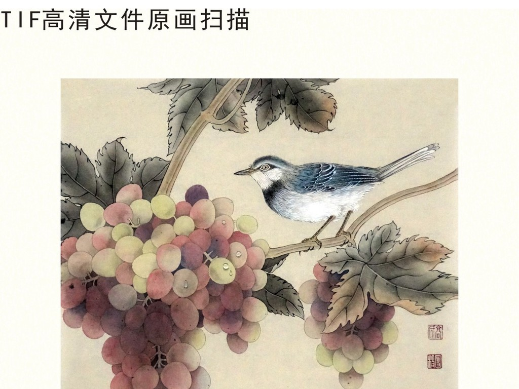 葡萄硕果花鸟工笔画中国风挂画