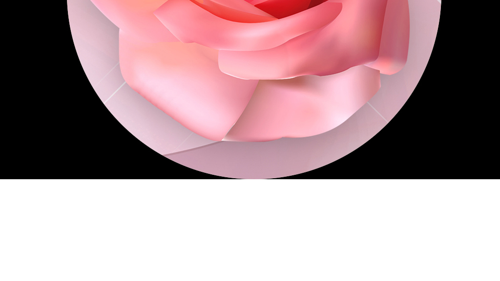 欧式罗马柱3d软包玫瑰花藤立体电视背景墙
