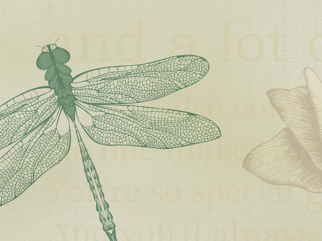 北欧手绘复古玫瑰花蜻蜓蝴蝶英文电视背景墙