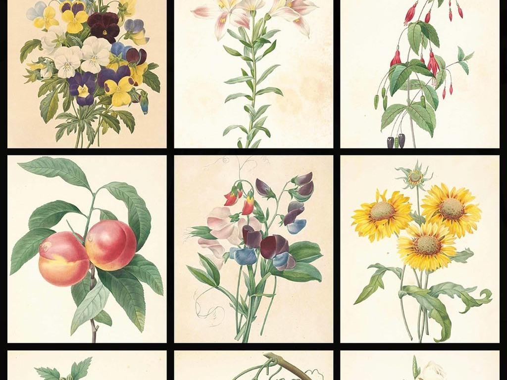 高清唯美复古手绘彩绘花蕊设计素材图片下载素材-花卉