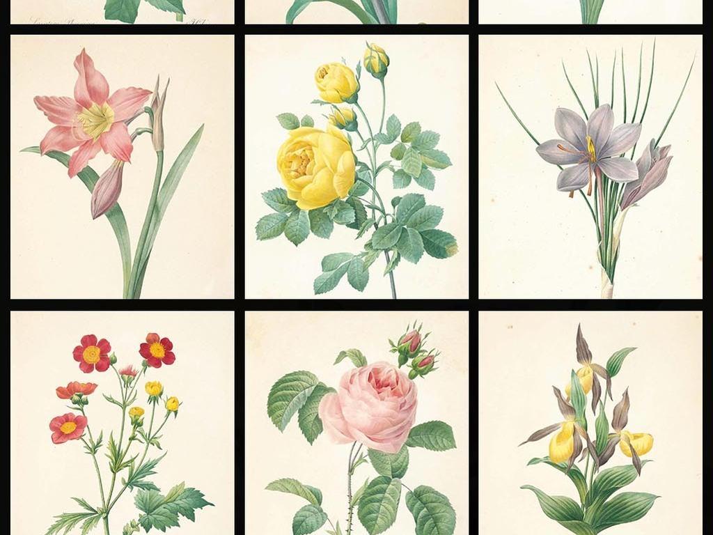 高清唯美复古手绘彩绘花蕊设计素材(图片编号:)_花卉