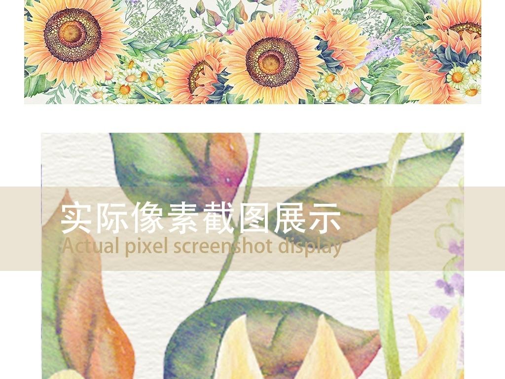 太阳花黄花水彩手绘背景向日葵背景手绘向日葵水彩