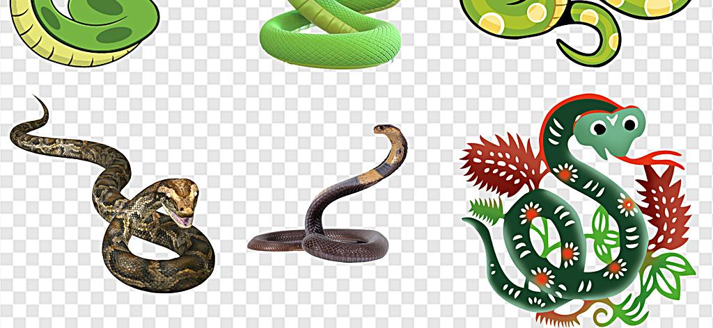 可爱蛇卡通蛇年素材动物蛇