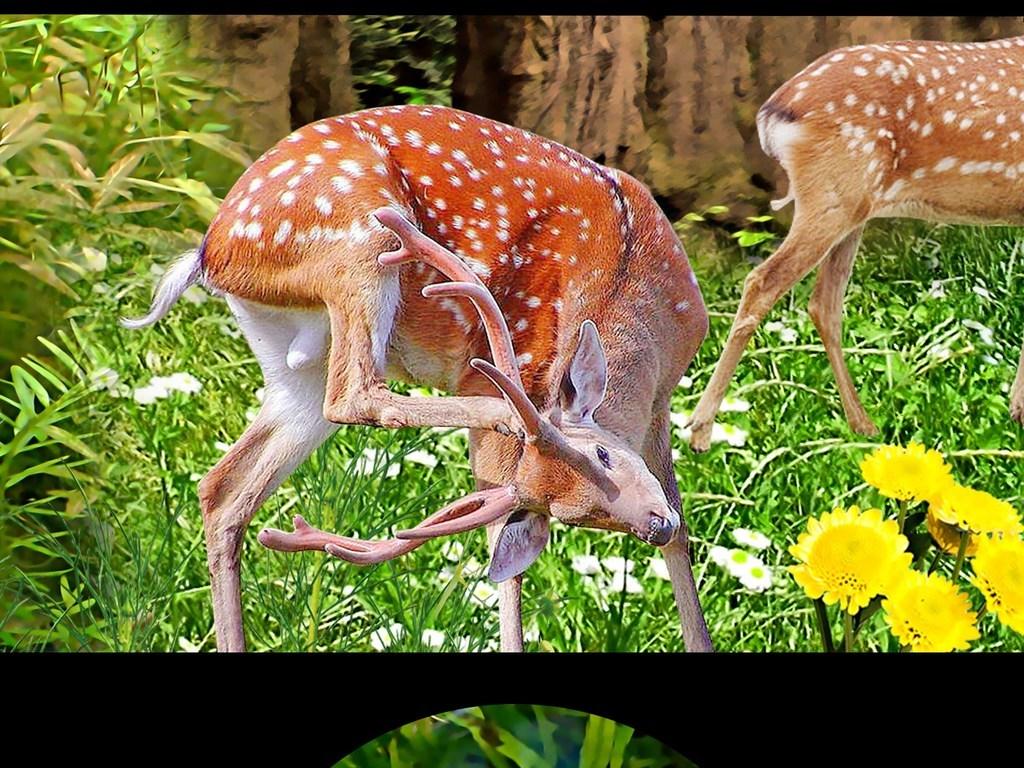 高清梅花鹿花卉梦幻森林风景画背景墙