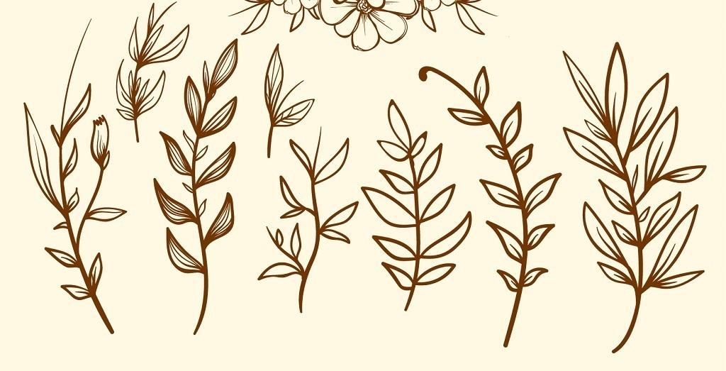 手绘叶子线描花卉叶子背景手绘人物手绘墙手绘背景墙