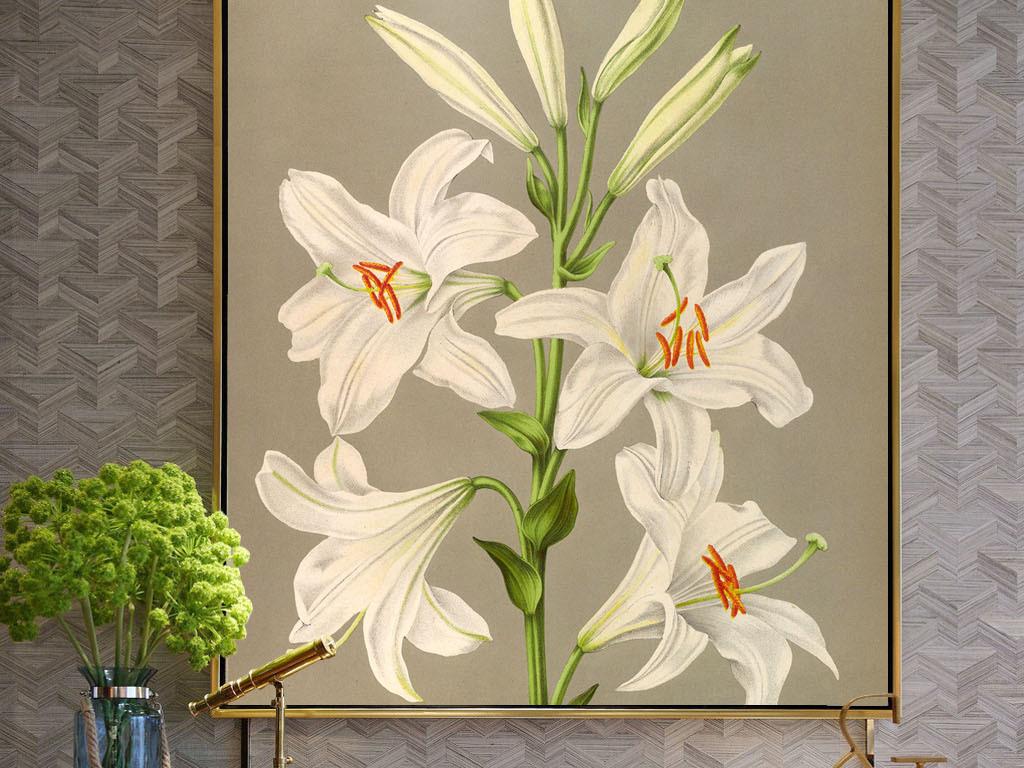 美式手绘淡雅百合花无框画(图片编号:15986872)_植物