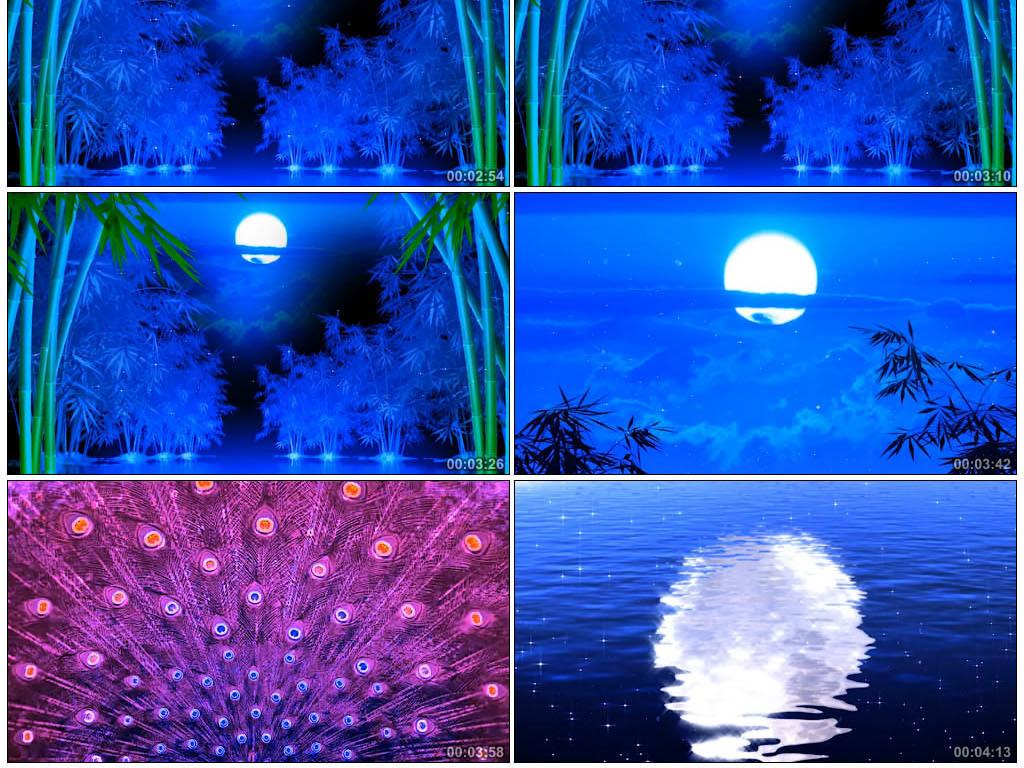 月光下的凤尾竹led大屏幕背景