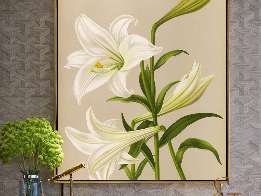 美式风格手绘百合无框画(图片编号:15995823)_植物无