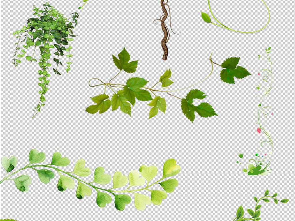 树藤秋千手绘图片
