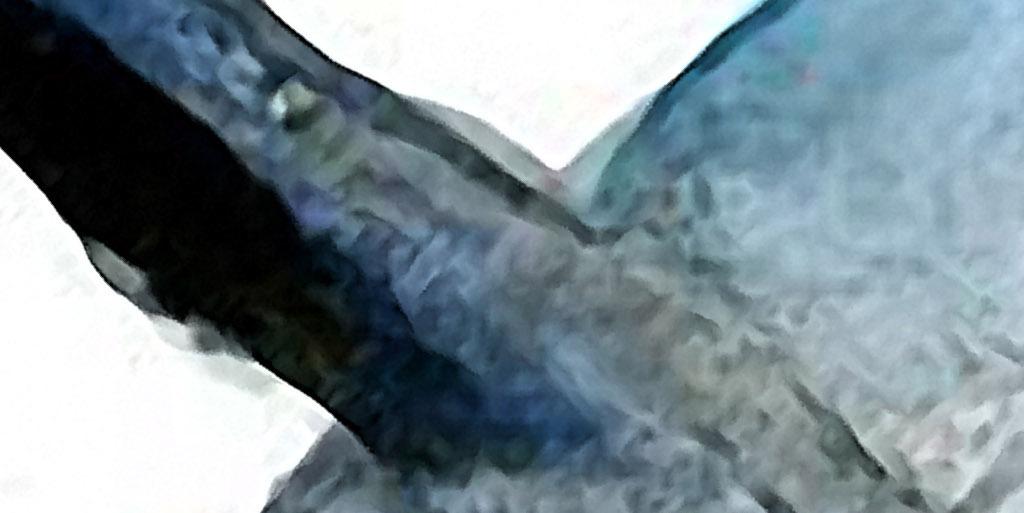 一跃而起的鲸鱼海洋北欧手绘现代欧式装饰画