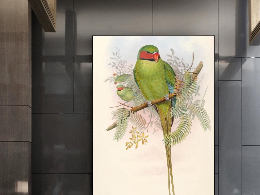 新中式手绘鹦鹉无框画1