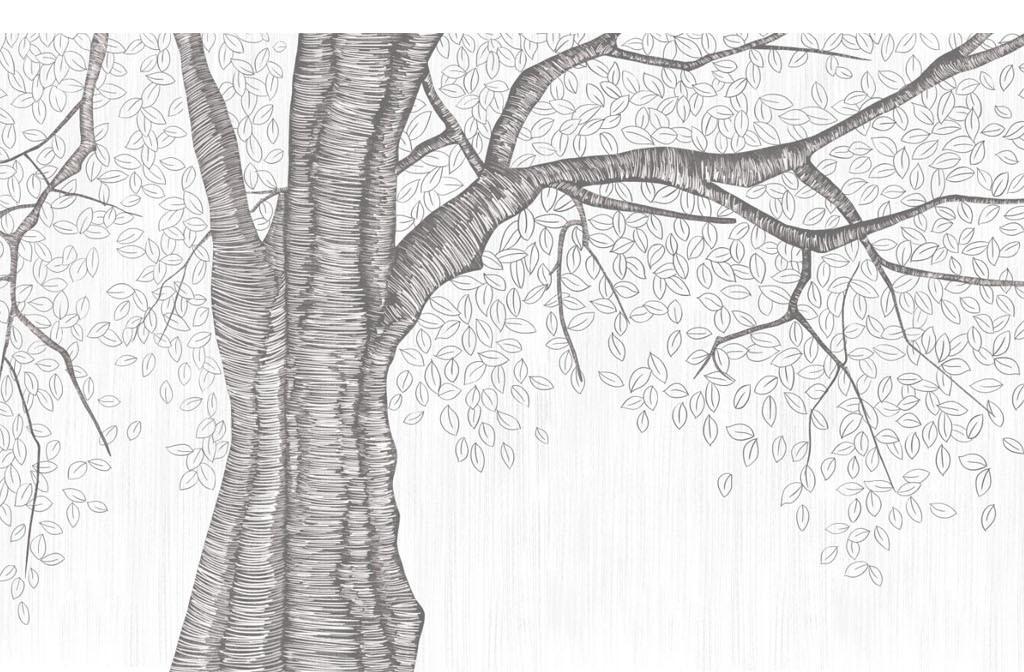 手绘黑白素描风格简约北欧抽象树背景墙图片