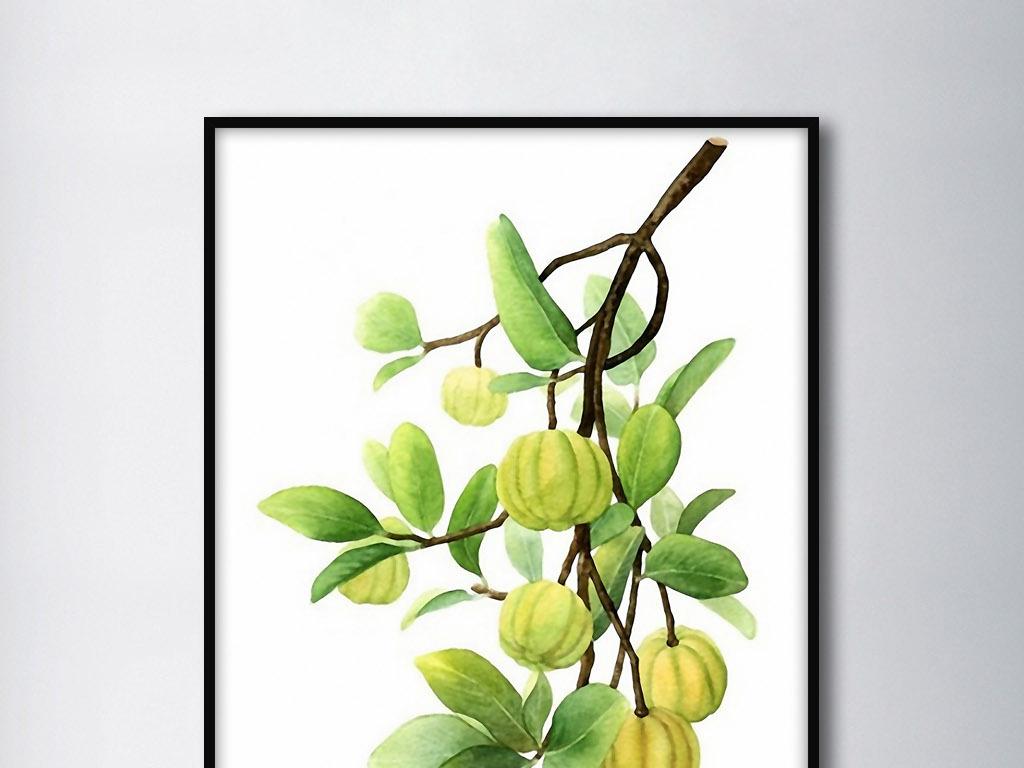 手绘清新现代清新绿叶树枝绿叶水珠绿叶图片绿叶水滴绿叶的图片一片