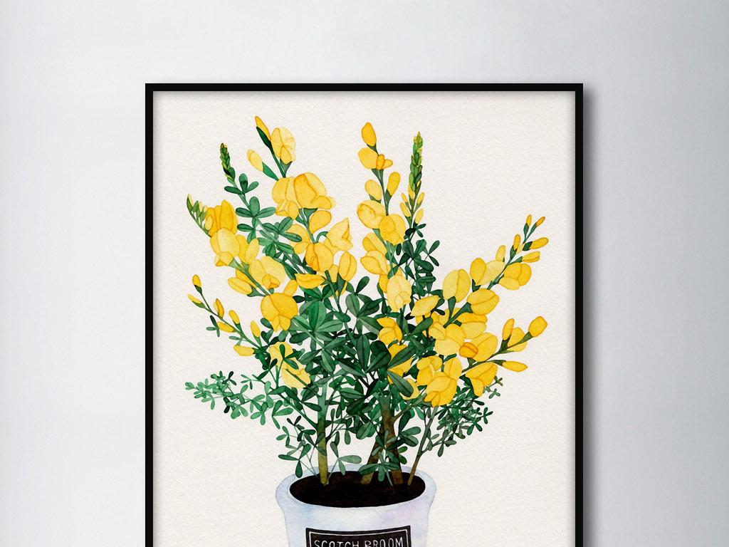 金雀花欧美手绘花卉北欧小清新家居装饰画
