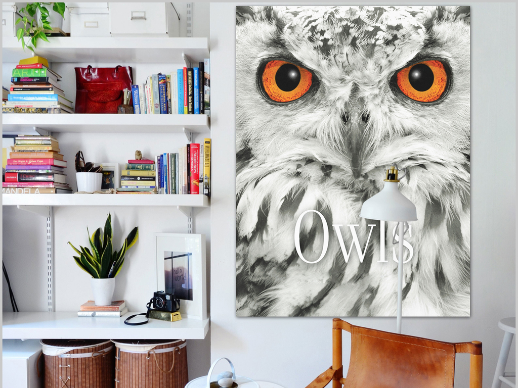 手绘欧式手绘猫头鹰手绘简约简约手绘现代欧式创意简约彩色条纹彩色字
