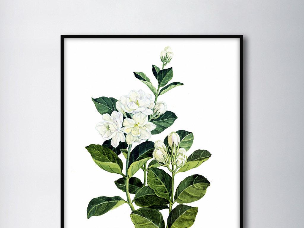 手绘植物叶片北欧