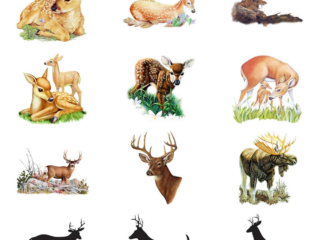 多款梅花鹿等鹿科免抠png透明素材图片