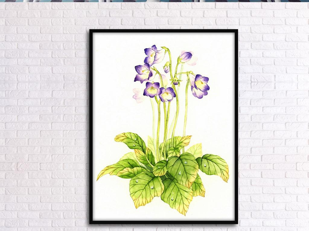 水彩画挂画图片设计花卉手绘花卉欧式花卉手绘清新手绘欧式北欧家居花