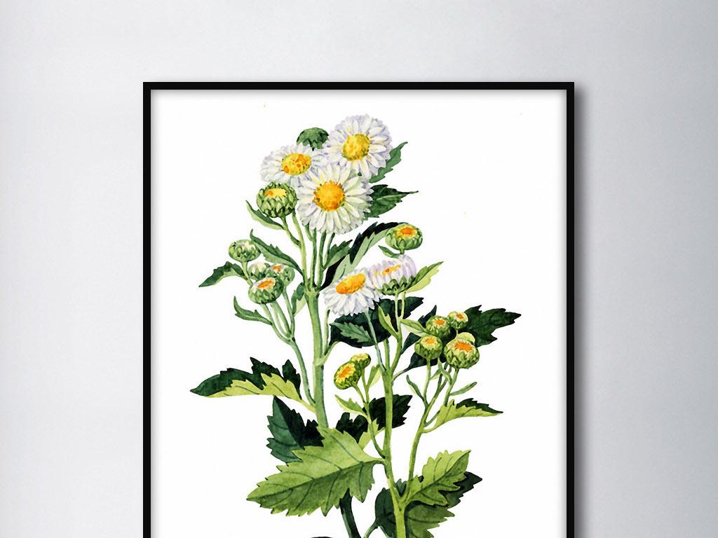 秋菊飘香现代欧式手绘花卉北欧家居装饰画