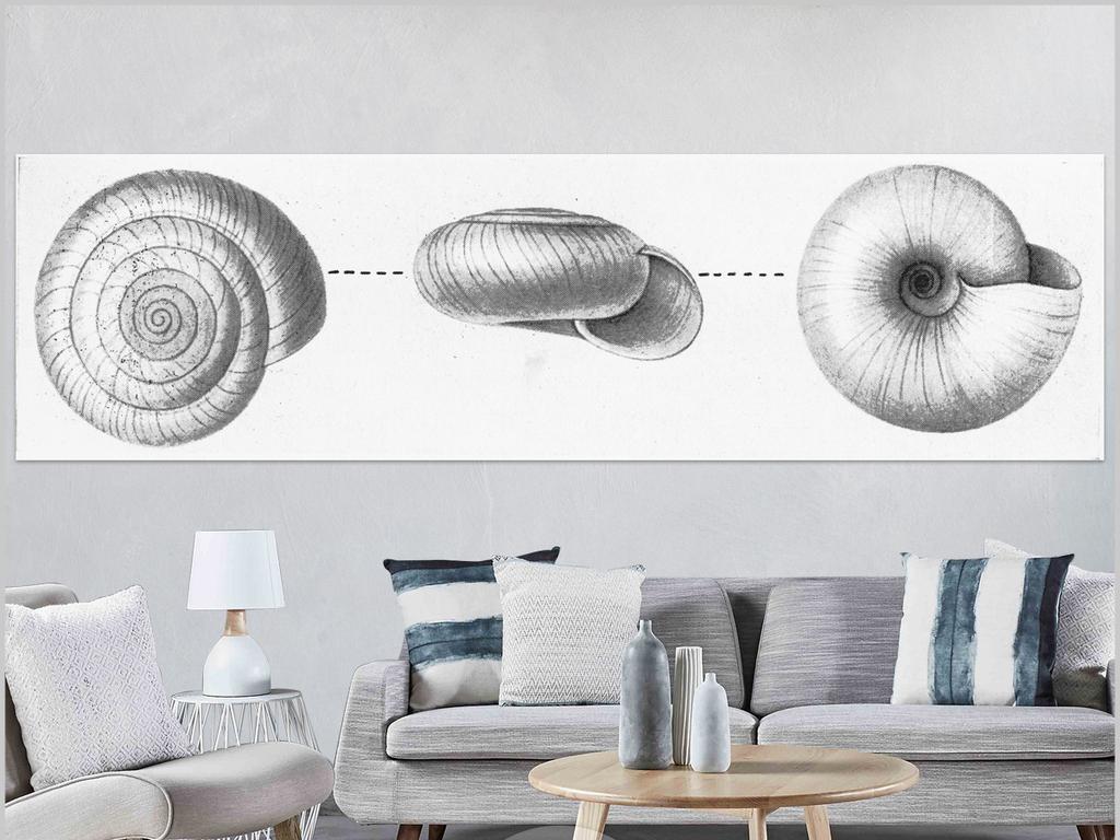 北欧现代简约手绘黑白蜗牛贝壳插画无框画