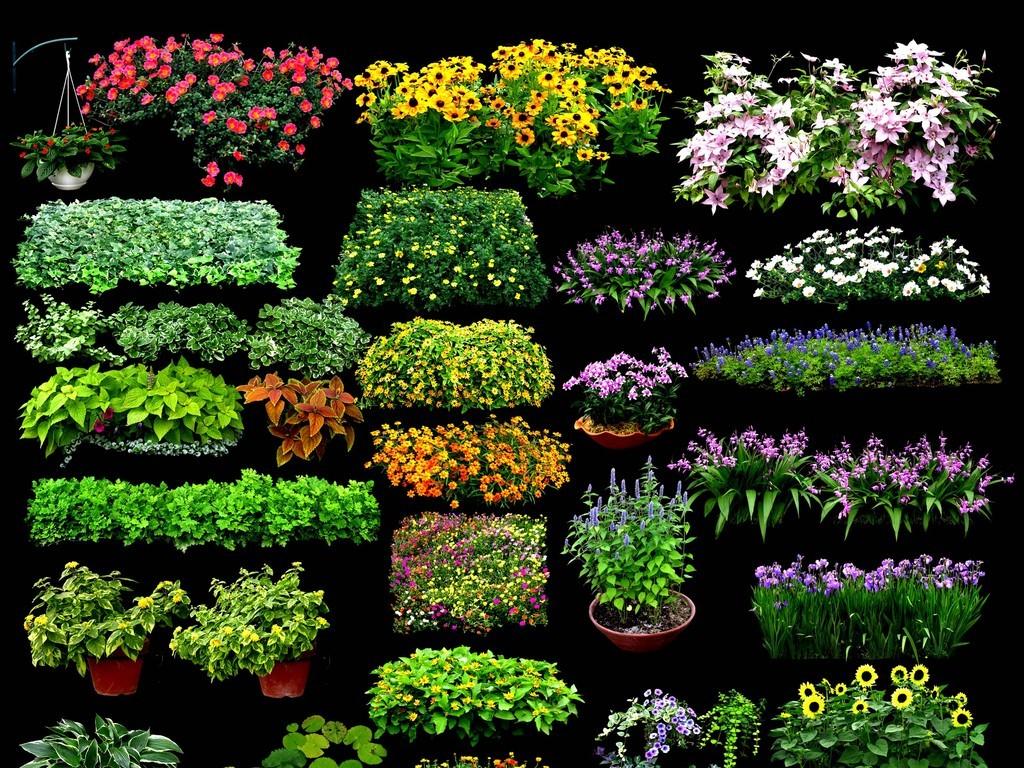 设计元素 自然素材 花卉 > 园林景观花草树林鸟瞰效果图psd源文件