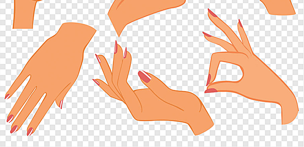 png)                                  女人手绘女人手矢量图卡通