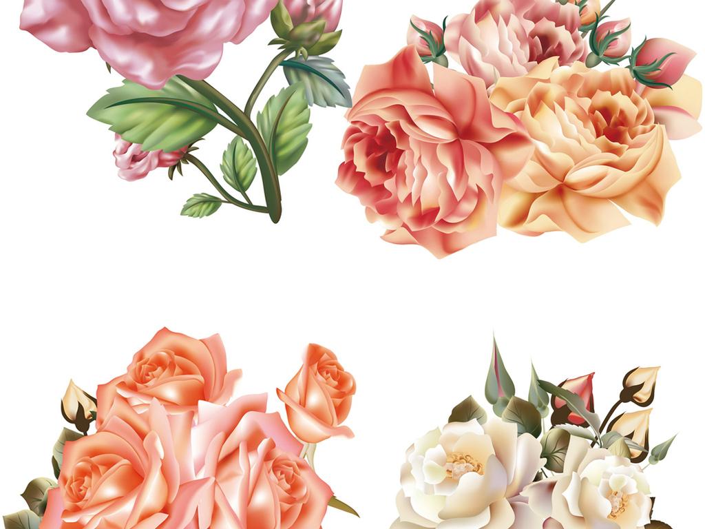 手绘玫瑰花ai格式矢量素材