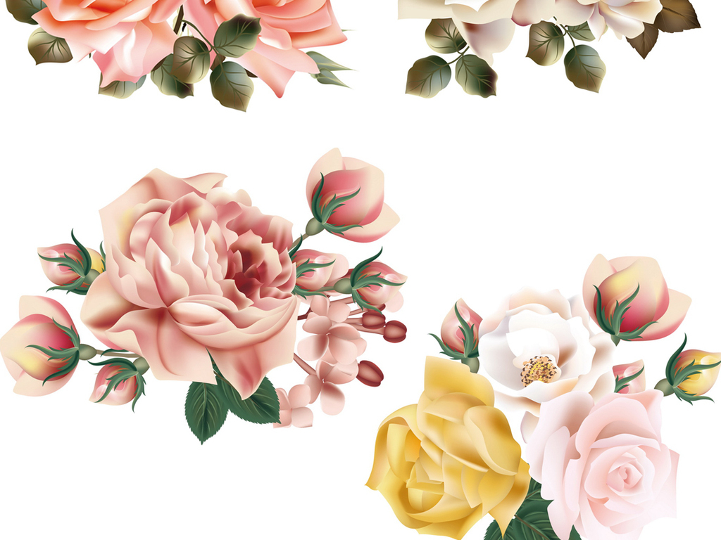 手绘花卉植物鲜花水彩花朵玫瑰花ai格式矢量素材