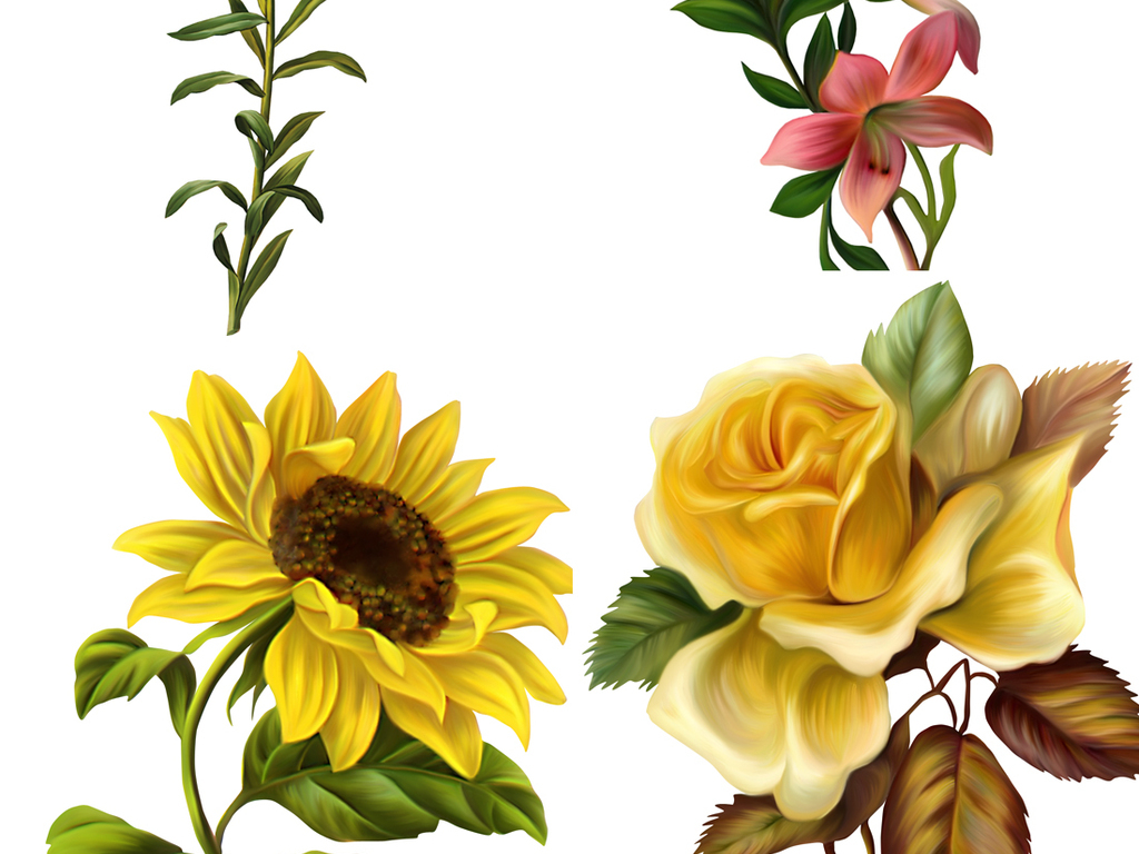 手绘花花纹设计                                          花束创意